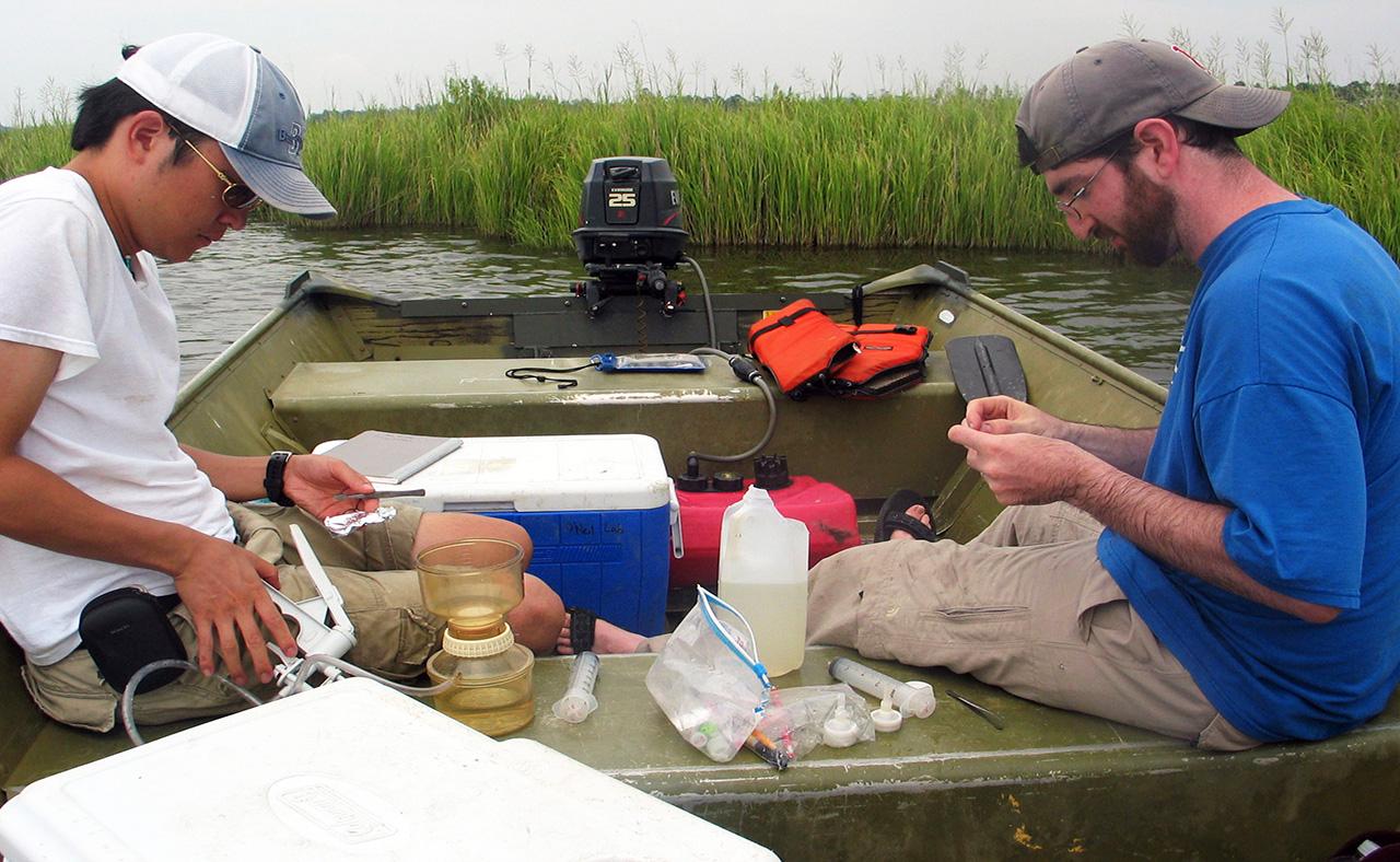 Chlorophyll a | Chesapeake Bay Story