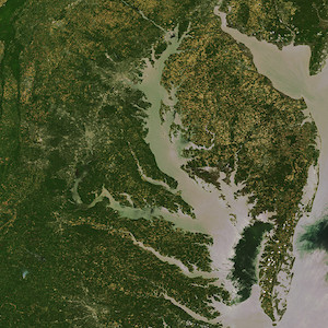 Satellite image of the Chesapeake Bay in Maryland with the Eastern Shore shown on the right and the mainland to the left. (Photo courtesy of Envistat).